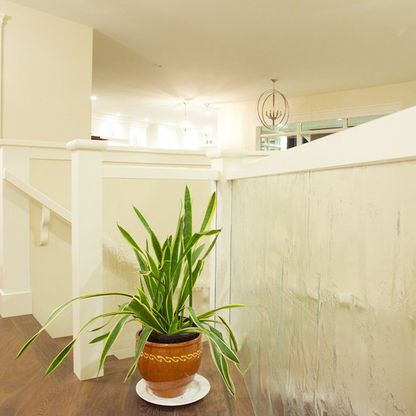 White stair landing corridor with green plant